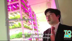indoor-farm-japan-interior2