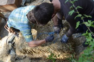straw-bale-wrapping-strohballen